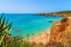 Roches de falaise sur la belle plage Photo stock