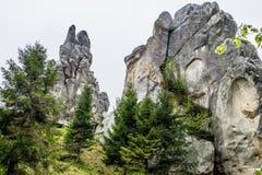 Roches de forteresse de Tustan Nature de l'Ukraine photographie stock