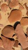 Roches de grès rouge Image stock