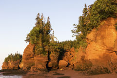 Roches de Hopewell dans le Canada au lever de soleil Photographie stock libre de droits