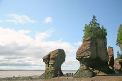 Roches de Hopewell, Nouveau Brunswick Photos stock