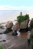 Roches de Hopewell, Nouveau Brunswick, Canada Photographie stock