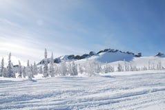 Roches de l'hiver Photos libres de droits