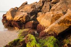 Roches de mer couvertes de la mousse sur la plage Images stock