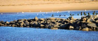 Roches de plage Images stock