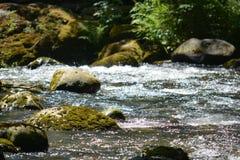 Roches de rivière photo libre de droits