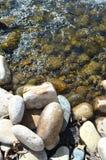 Roches de rivière dans l'eau de scintillement photo libre de droits