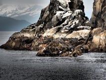 Roches de vue d'océan image stock