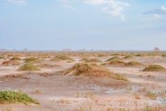 Roches de Yardang dans le désert de gobi à Dunhuang Yardang Geopark national, Gansu, Chine photo stock
