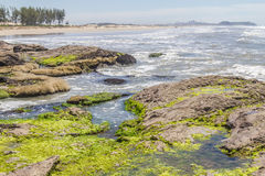 Roches en plage de Guarita chez Torres Image libre de droits