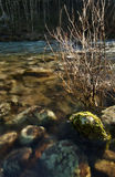 Roches ensoleillées sous-marines au coucher du soleil photo stock