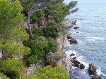 Roches et arbres de pin Photographie stock