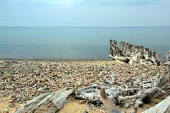 Roches et bois de flottage sur le supérieur de lac, Michigan Photographie stock