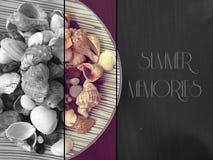 Roches et coquilles de mer avec le texte Photographie stock