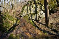 Roches et crique dans la forêt Images stock