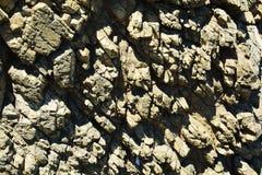 Roches grises, montagnes de l'Île d'Elbe, l'eau, vagues, fond naturel Images stock