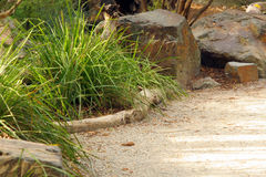 Roches, herbe et voie Photographie stock