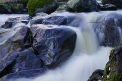 Roches humides brillantes en petite rivière rapidement débordante photos libres de droits