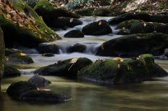 Roches moussues dans un courant de cascade Photographie stock libre de droits