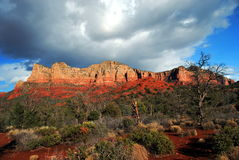 Roches rouges de Sedona Photographie stock libre de droits