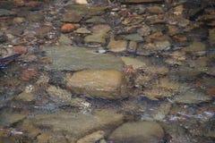 Roches sous l'écoulement de l'eau rapide photo libre de droits