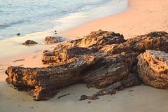 Roches sur la plage image libre de droits