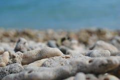 Roches sur le rivage d'Australie Photographie stock
