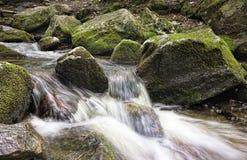 Roches vertes dans le courant de montagne Photos libres de droits