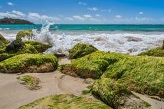 Roches vertes des Caraïbe image libre de droits