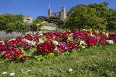 Rochester em Kent, Reino Unido imagem de stock royalty free
