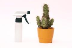 Rociador con el cactus en un pote Fotografía de archivo