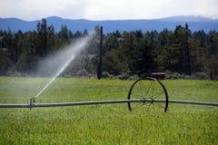 Rociadores automotores de la irrigación Fotografía de archivo libre de regalías