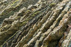 rockÑ‹的织地不很细牙在黑海海岸的  库存照片