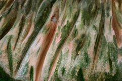 Rock. A rock involved, erosion, auxiliary view Royalty Free Stock Images