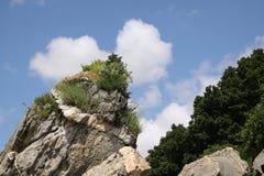 rock Arkivfoto
