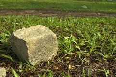 Rock. On Grass Patch Royalty Free Stock Photos