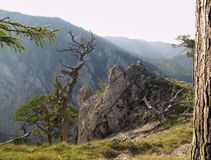 Rock above Hollental gorge in Rax Alps Stock Photo