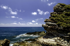 Rock with amazing texture covered with green schrubs facing the ocean. Royalty Free Stock Photography