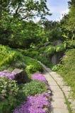 Rock arias of botanical garden Stock Images