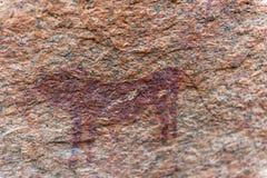 Rock art of the San People near Spitzkoppe