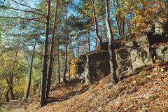 The rock in the autumn forest Stock Photo