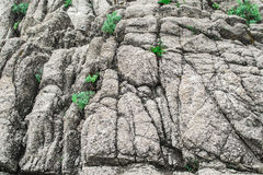 Rock background. Beautiful rock background. Stone mountain Royalty Free Stock Photography