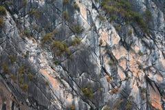 Rock Background Closeup Stock Photos