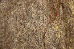 Rock Background Texture Royalty Free Stock Photos