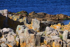 Rock and baltic sea, europe Royalty Free Stock Image