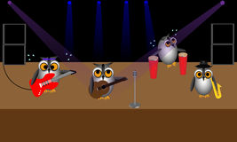 Rock Band of Owls Royalty Free Stock Photos