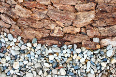 Rock bark texture. And background Royalty Free Stock Image
