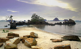 Rock on beach. Krabi, Thailand Stock Photos