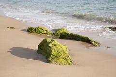 Rock on Beach at Canos de Meca, Cadiz Stock Photography