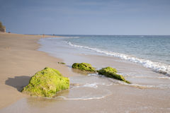 Rock on Beach at Canos de Meca, Cadiz, Andalusia Royalty Free Stock Images
